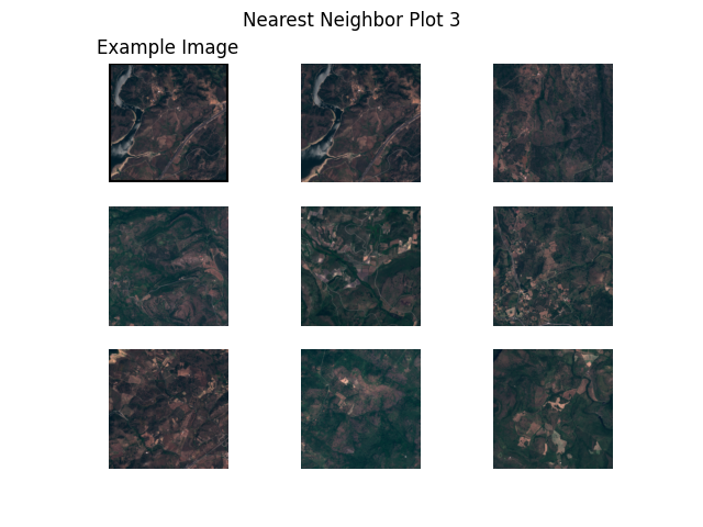 Nearest Neighbor Plot 3, Example Image